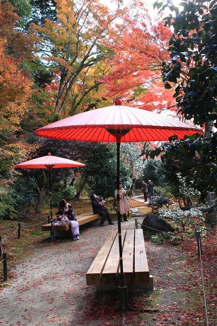 赤い傘.jpg